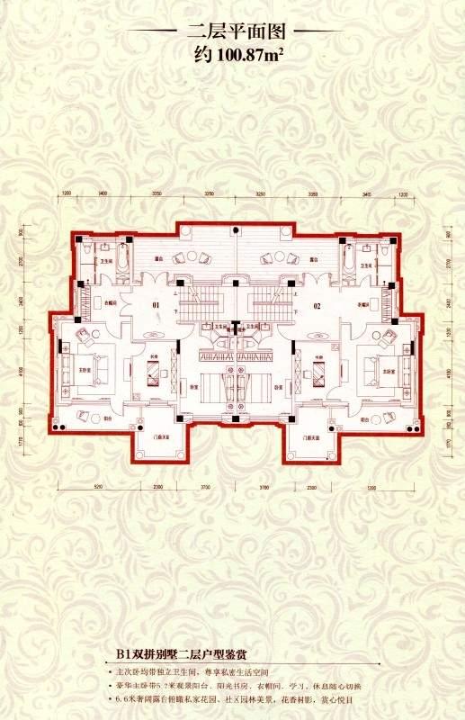 B1双拼别墅二层平面图