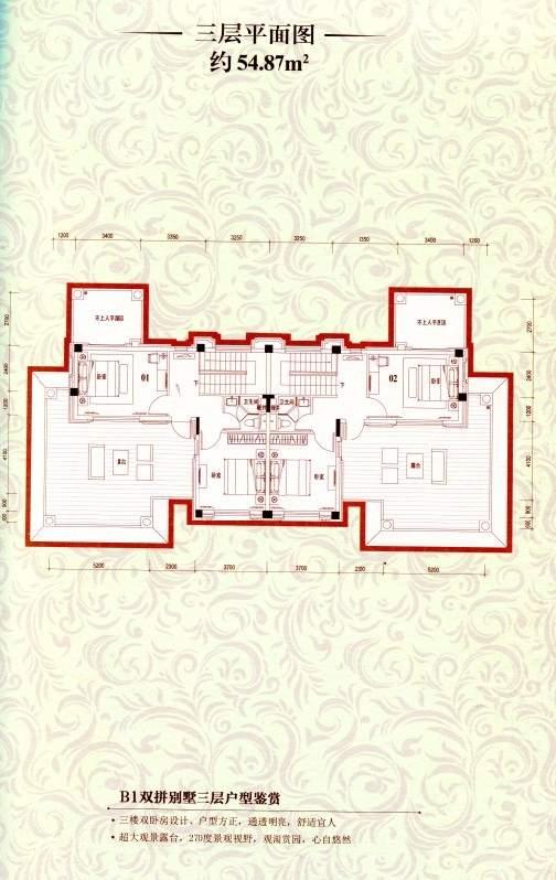 B1双拼别墅三层平面图