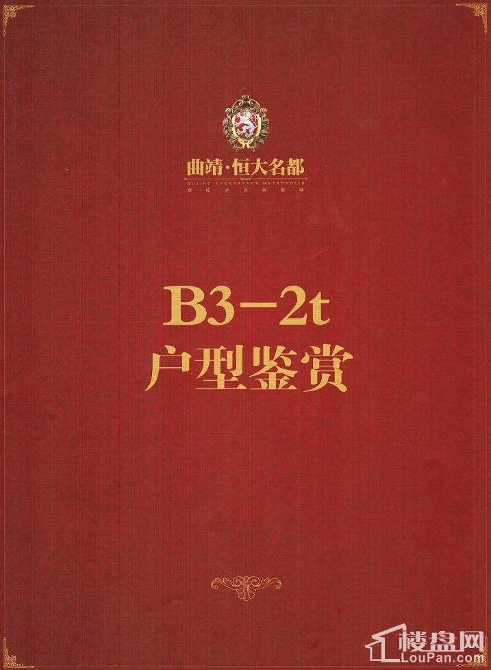 B3-2t户型鉴赏