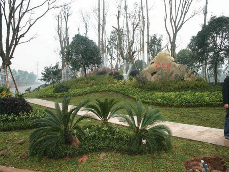 天成郦湖国际社区实景图