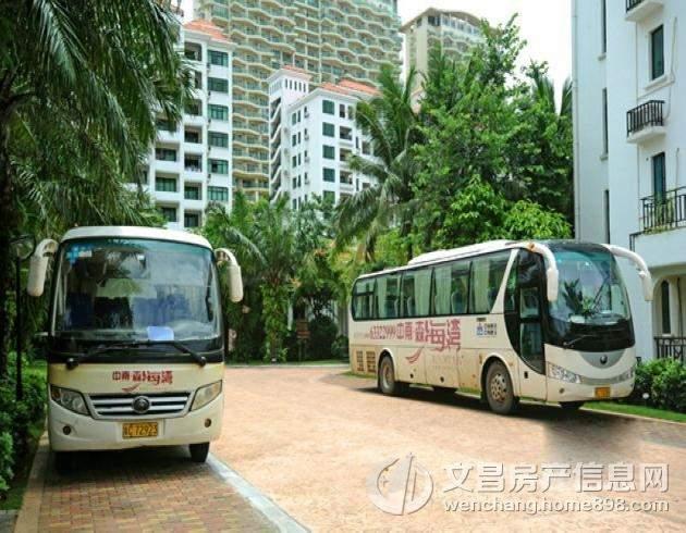 森海湾社区巴士