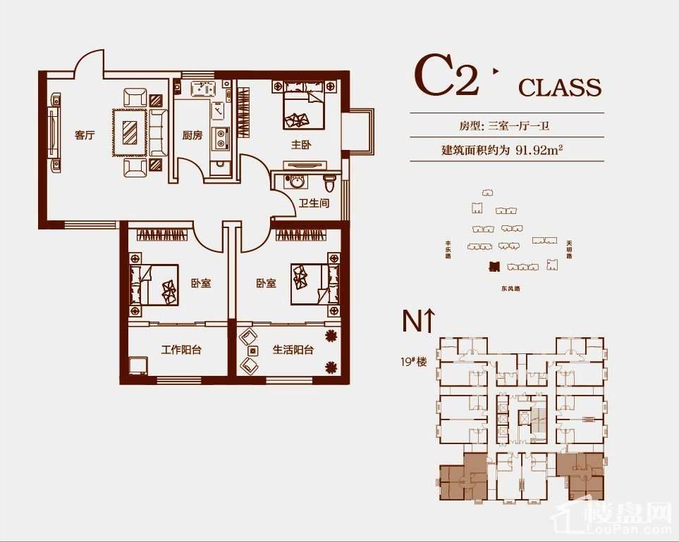 C2(19#)