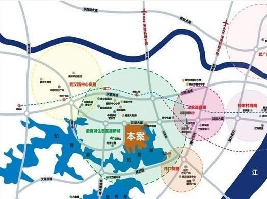 武汉中国健康谷位置图