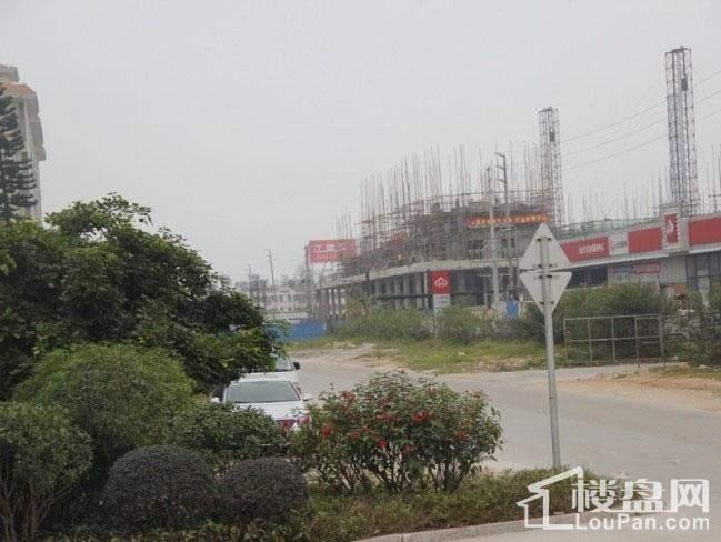 江南岸·随园实景图
