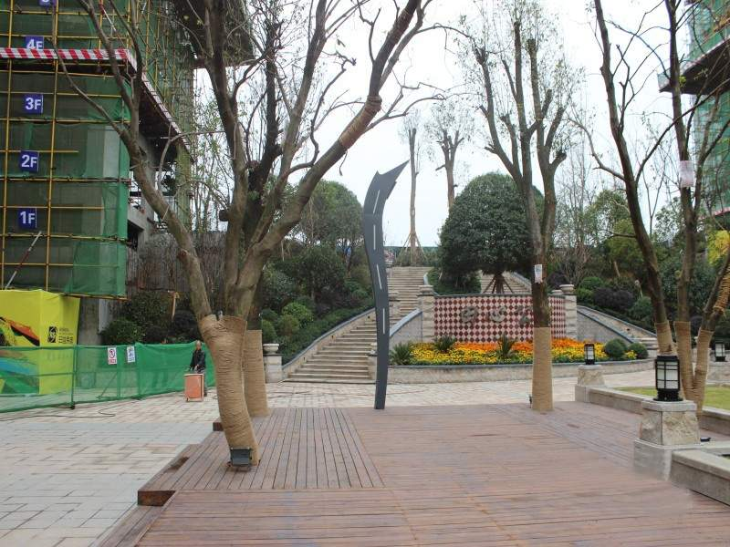 实景图广场