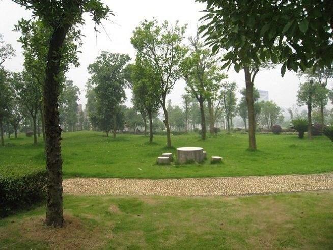 配套图创意绿化公园