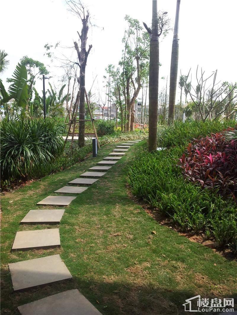 中央绿园实景图