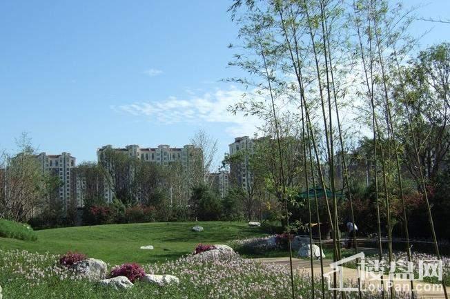 众美城园林实景图