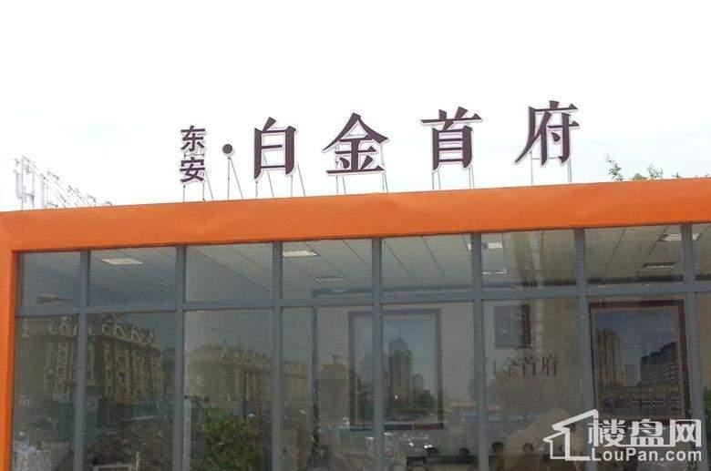 东安白金首府实景图