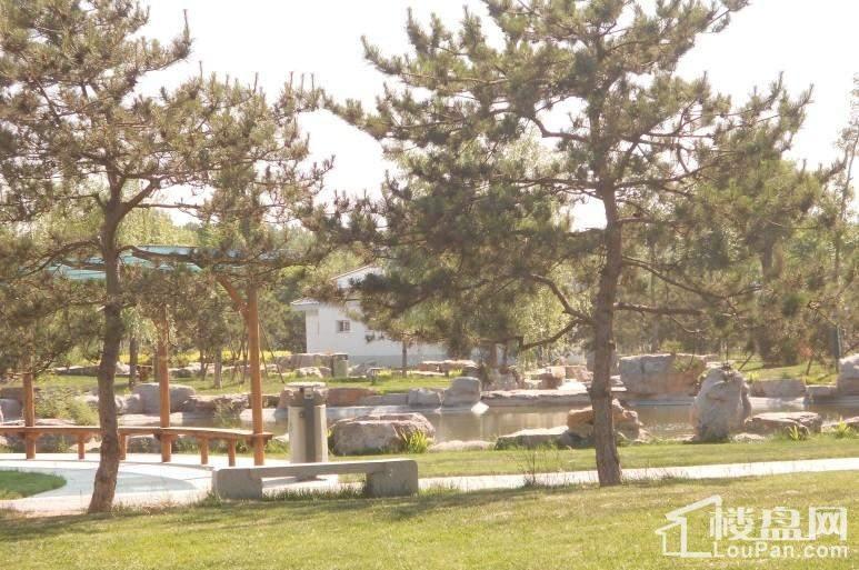 香榭家园施工实景图