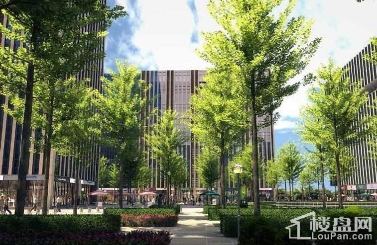 航城广场项目实景图