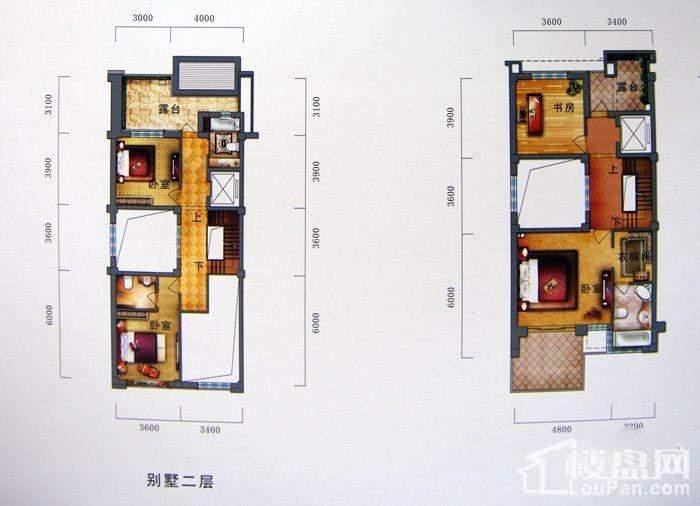别墅户型 二层三层