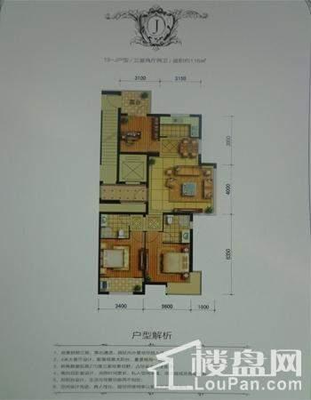 19—J户型