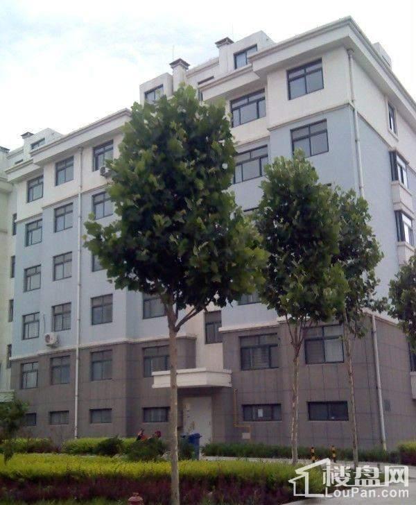 惠和园幼儿园施工进度实景图(2013-06-24)