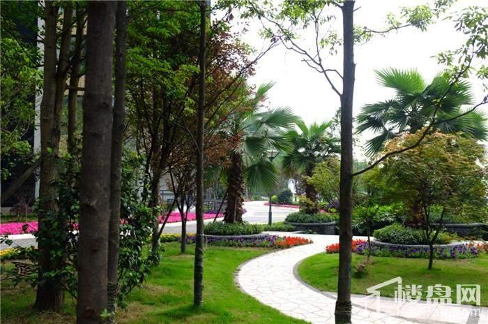 春雨江山实景拍摄