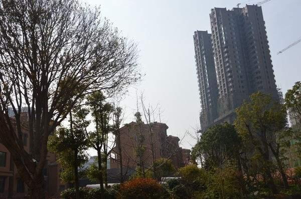 九华•金水湾实景图