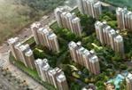 东方明珠—都市花园