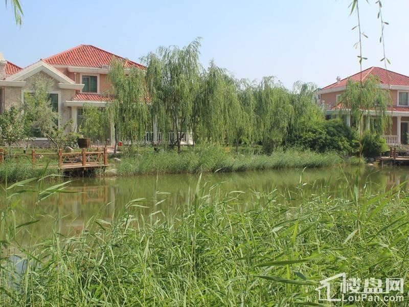 天鹅湖小镇实景图
