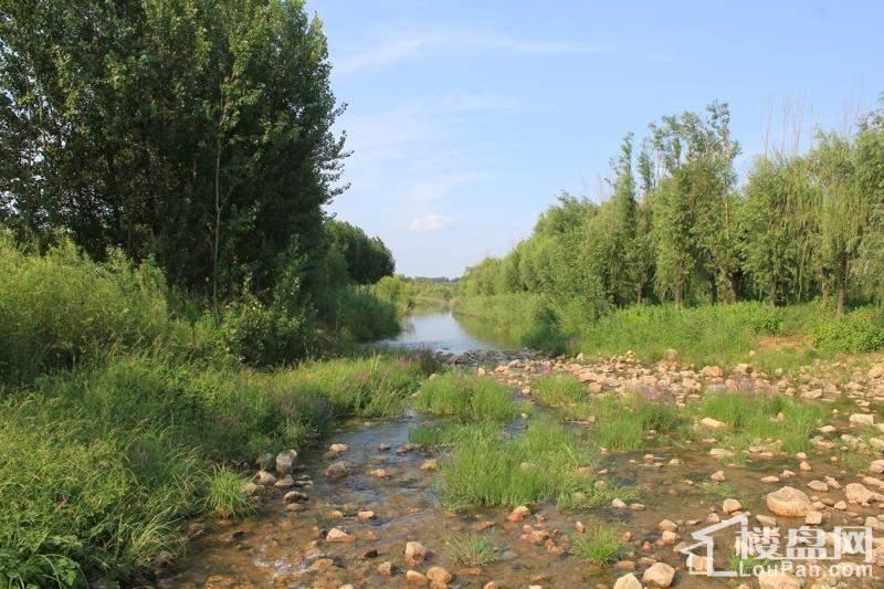 香颂湾周边湿地公园实景图