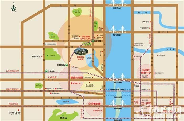当代滨江MOMA位置图