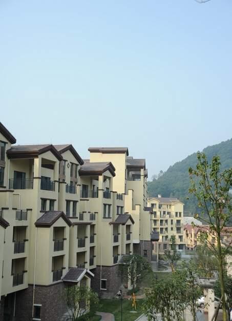 奇峰香山林海实景图