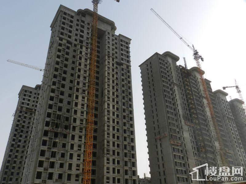 大有公馆实景图高层施工(2014-5-19)