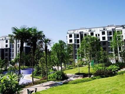 华粹南山绿庭实景图