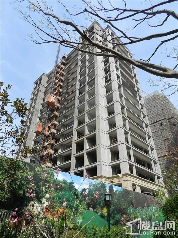 绿城诚园实景图高层进度(2014-04-29)