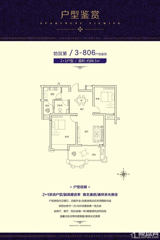 户型3-806