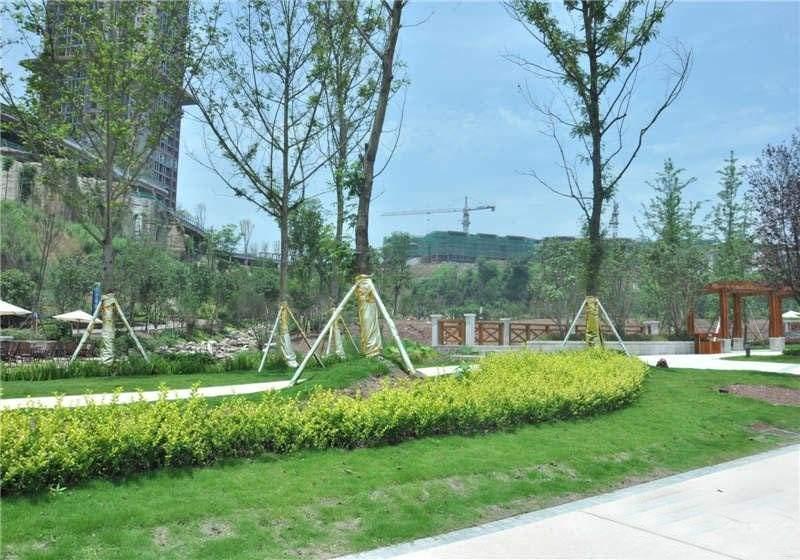 花滩国际新城丁香郡实景图