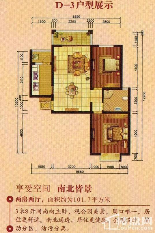 D-3户型图
