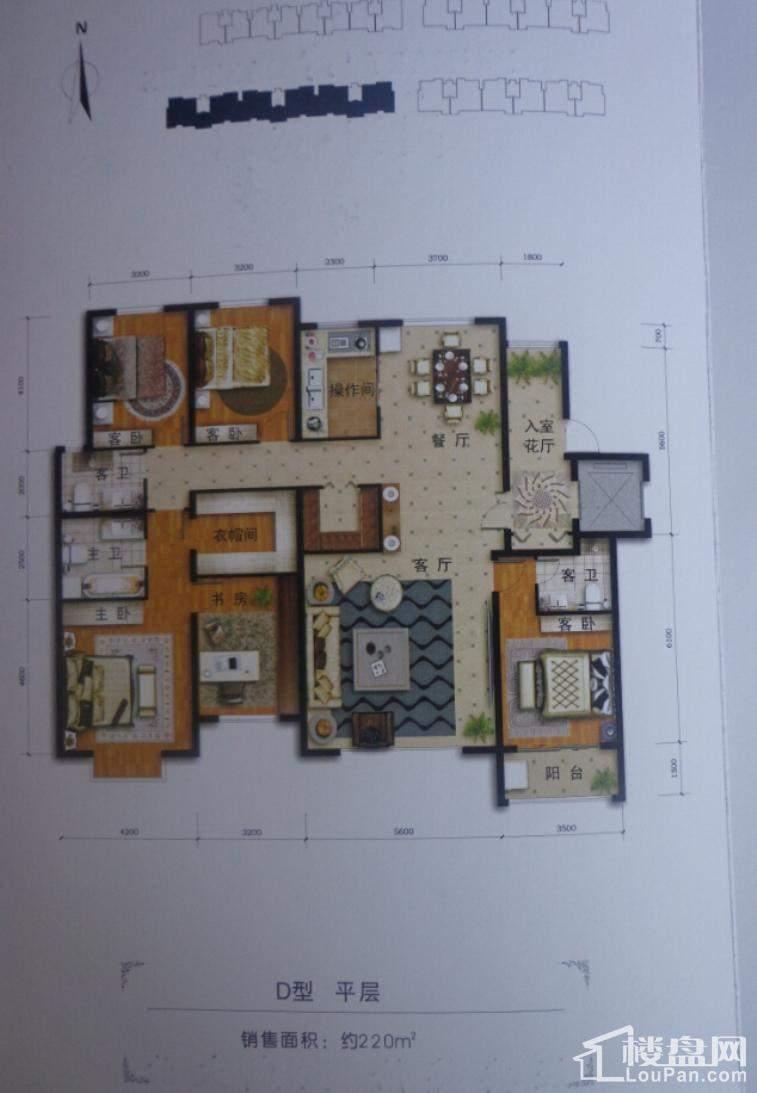 花园洋房D型平层