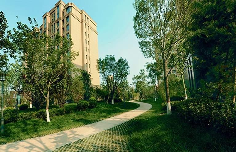 境界梅江观秀实景图