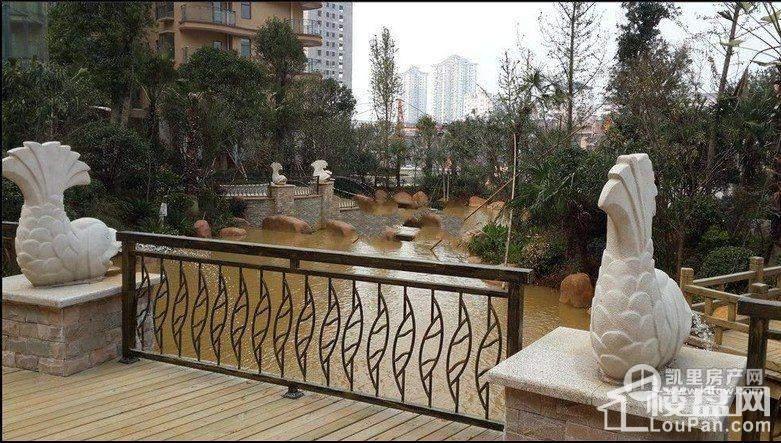 金泉国际新城实景图