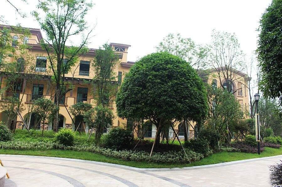 中海新城熙岸实景图