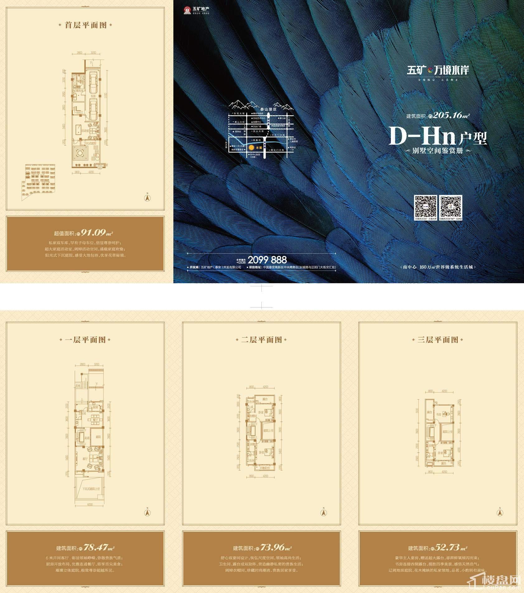 别墅户型D-Hn地上建筑面积205.16+赠送面积91.09