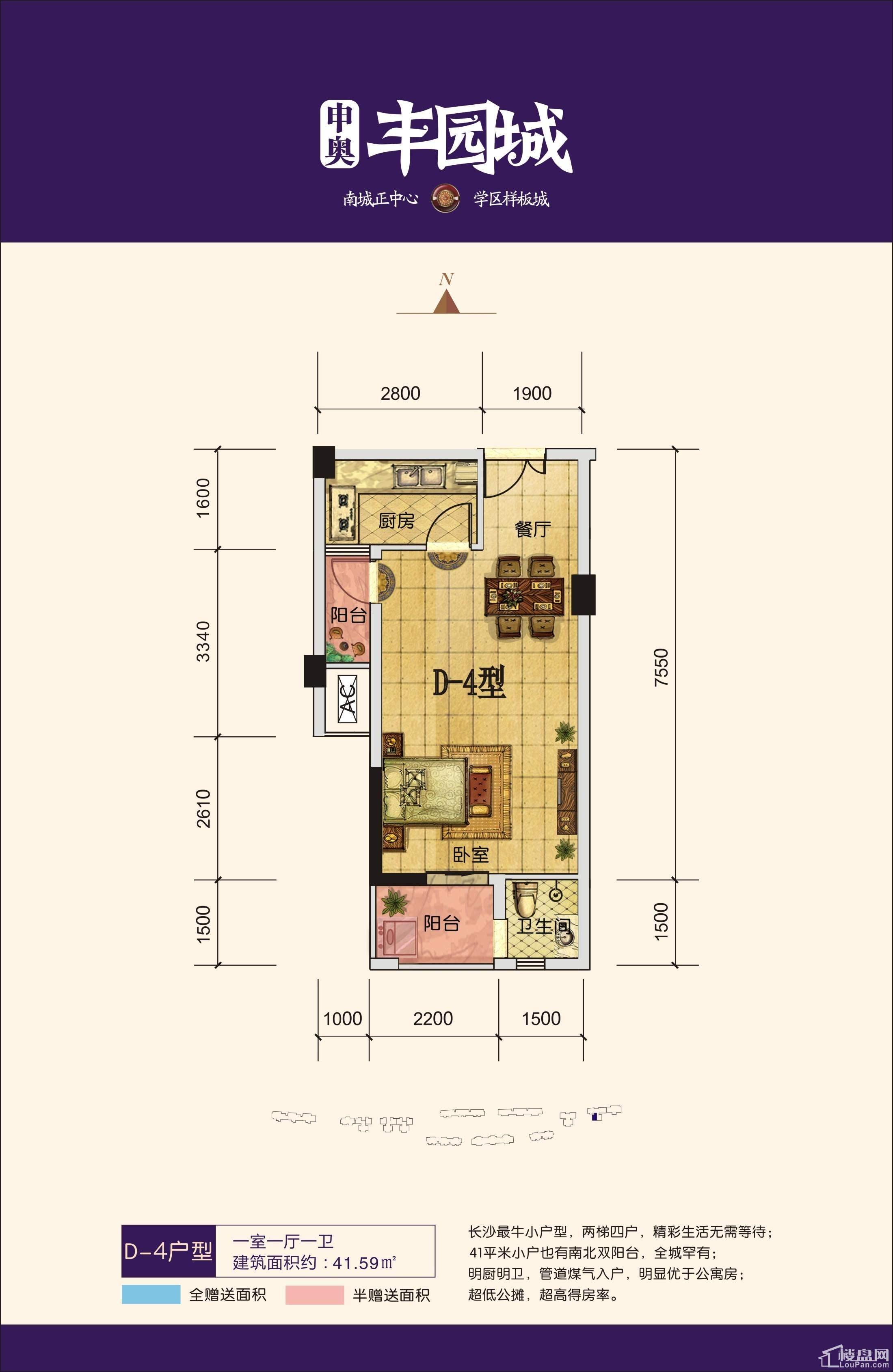 丰园城户型图D-4
