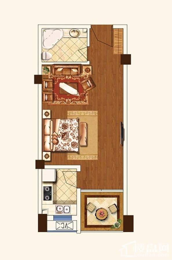 公寓D2户型[在售]