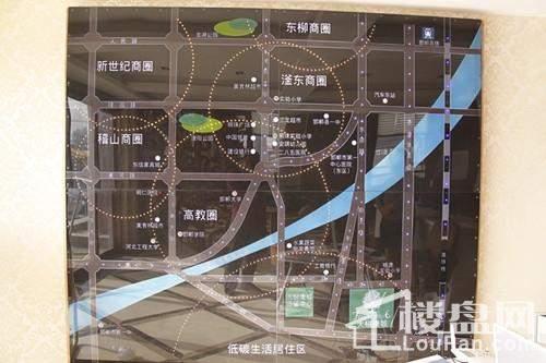 大树康城位置图