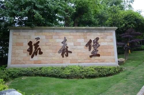 弘宇琉森堡实景图