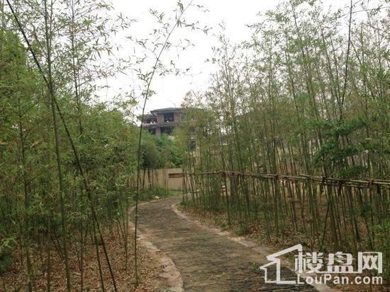 中华紫薇园·帝花溪谷实景图