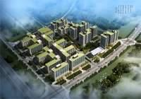 国际创新城