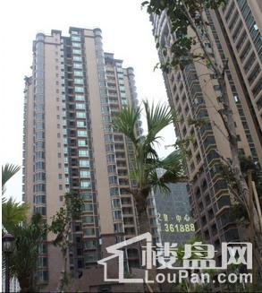 鸿江·尚城世家实景图