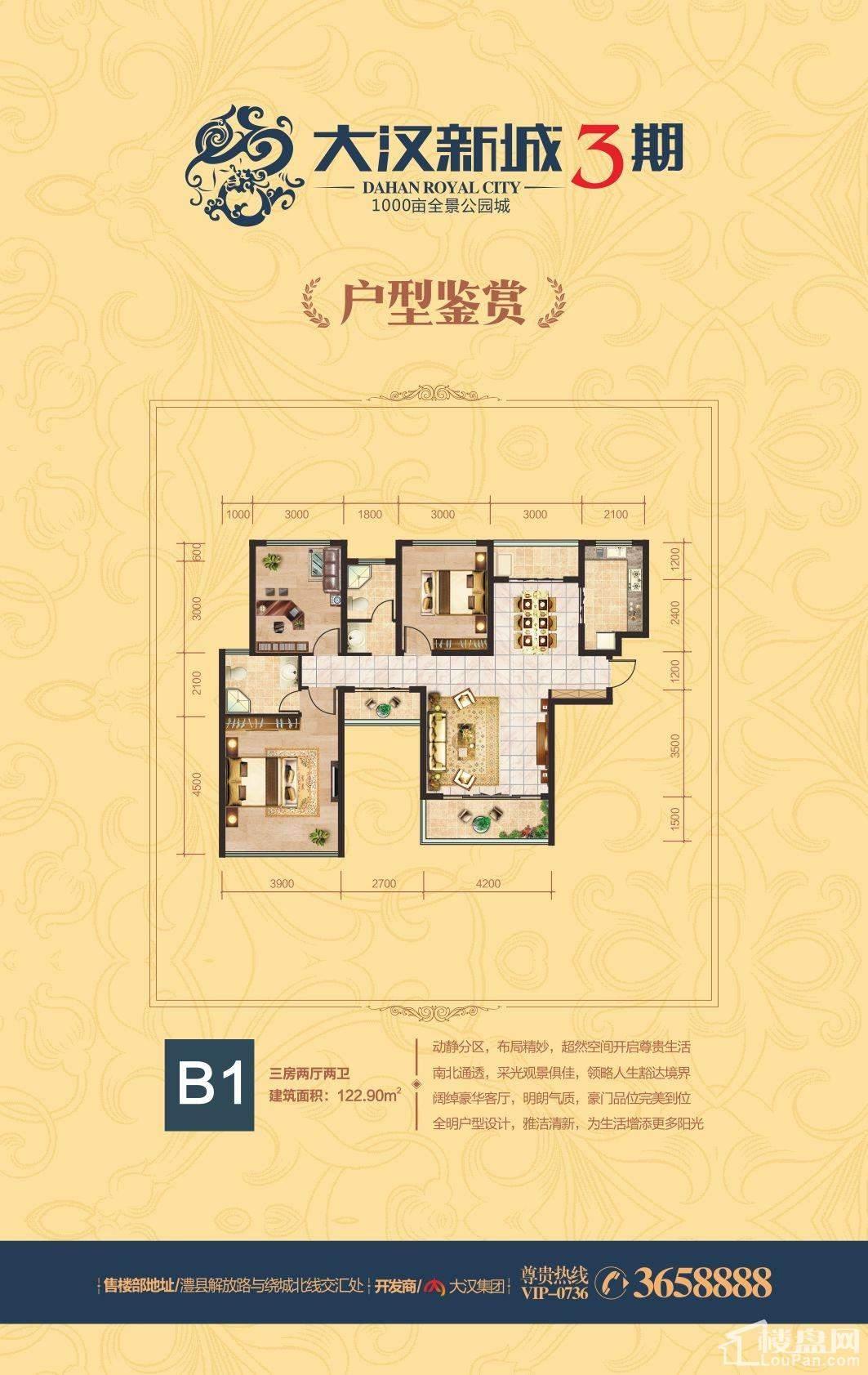 大汉新城B1户型户型图