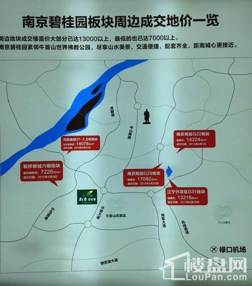 南京碧桂园位置图
