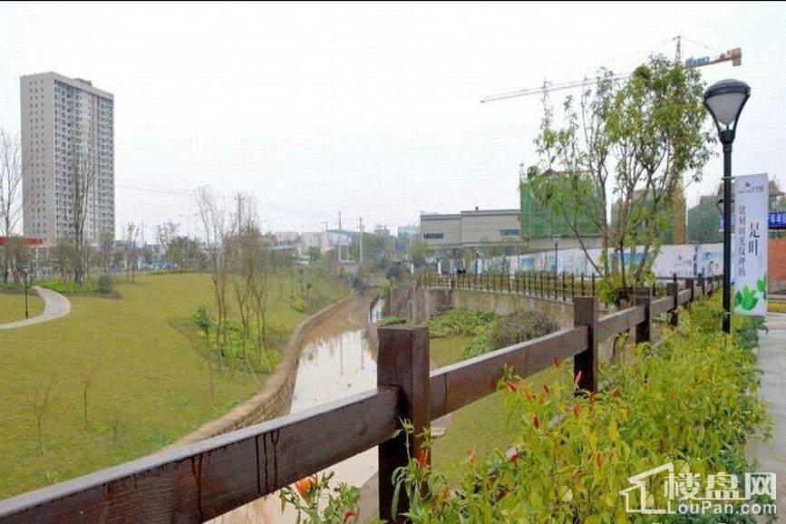 金阳第一农场大学城实景图