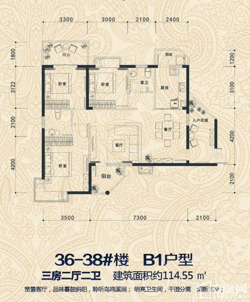 36-38#楼 B1户型