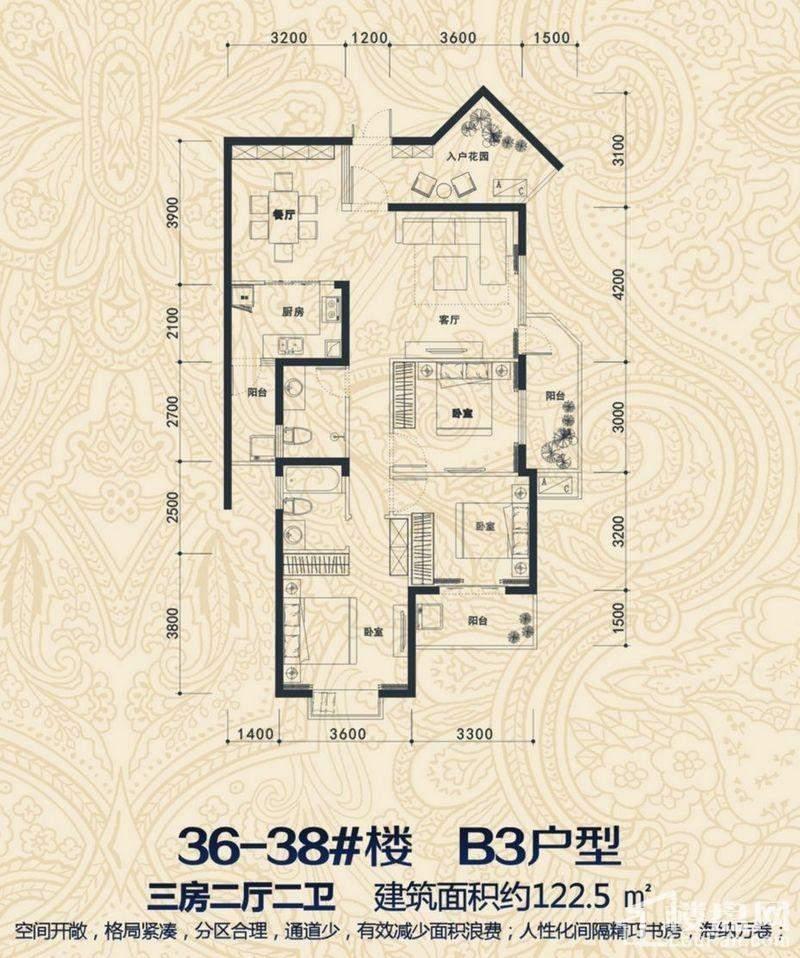 36-38#楼 B3户型