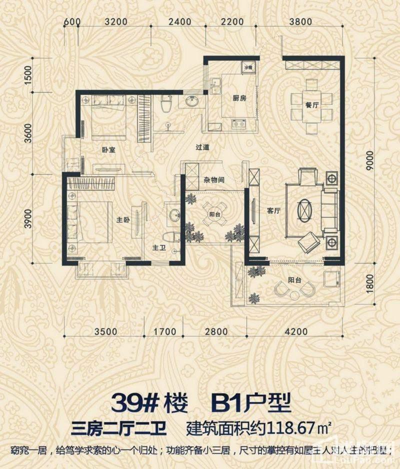 39#楼 B1户型