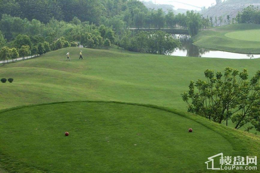 华美翡丽山周边佰富高尔夫球场